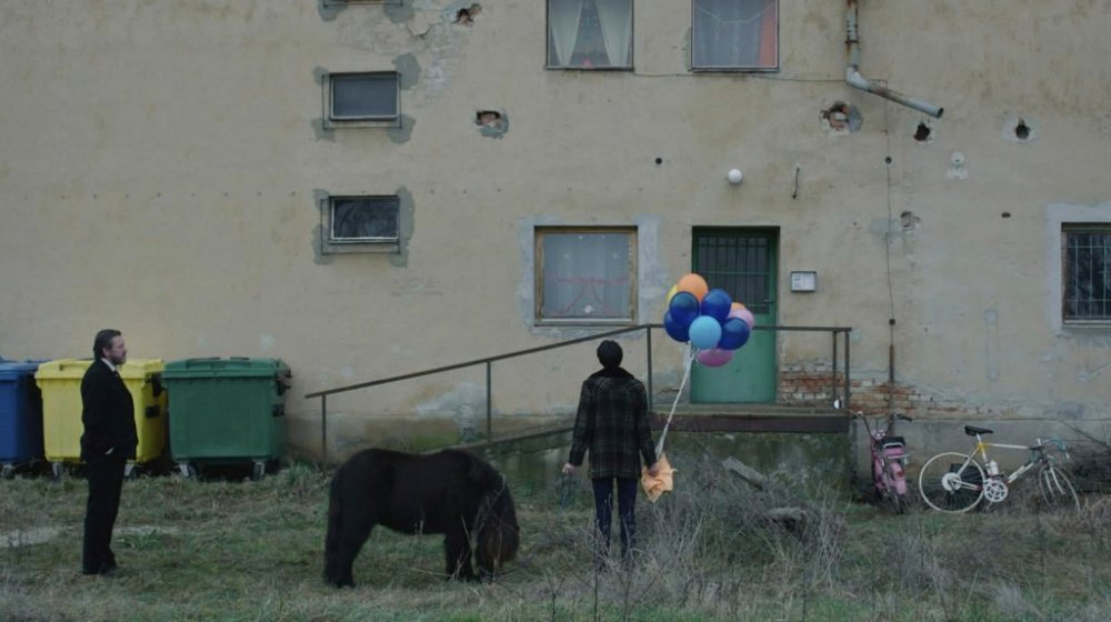 afterlife-2014-002-man-outside-apartment-block-with-balloons-and-pony
